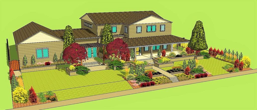 Landscape Design Layout