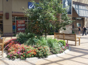 Flower Beds in Strip Mall